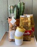 Taste of Puglia koffie pakket