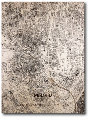 Brandthout Citymap Madrid